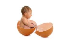 Baby In Egg