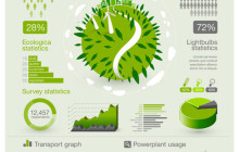 Green Eco Infographic
