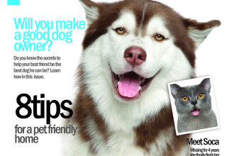 petsnstuff Magazine