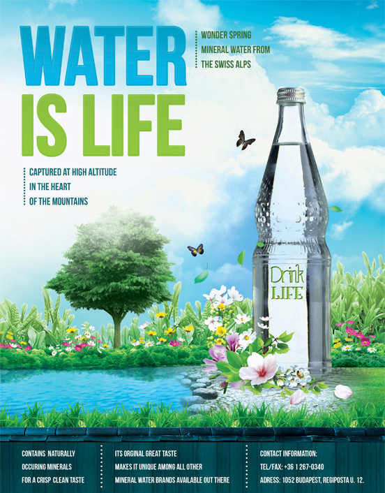 Water is Life Flyer